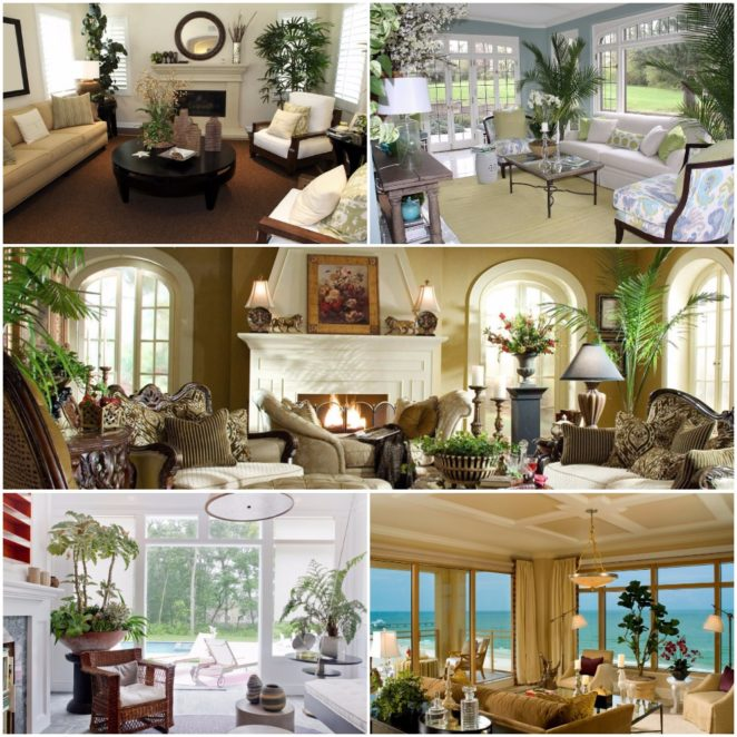 Tips How To Decorate Your Home With Plants Virily