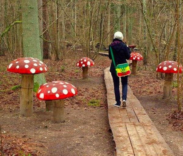Gorgeous Diy Mushroom Garden Decor Virily