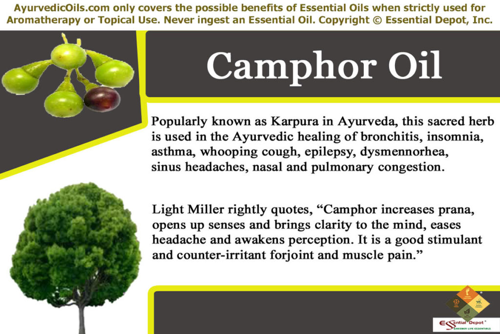 Use Camphor(kapoor in Hindi) for good and sound sleep - Virily