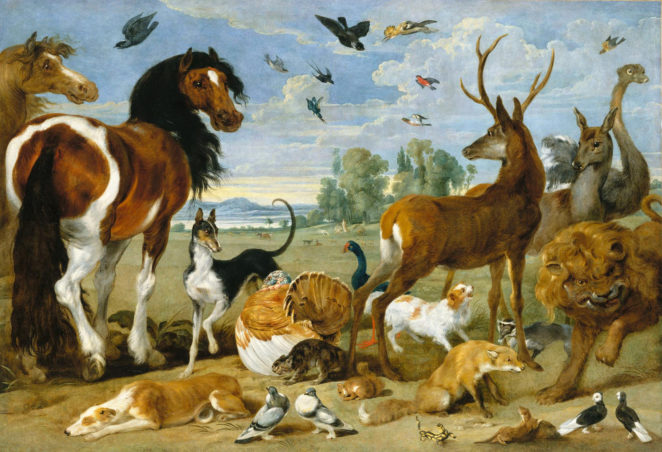 Noah's Ark - Identify the Animals! (QUIZ) - Virily