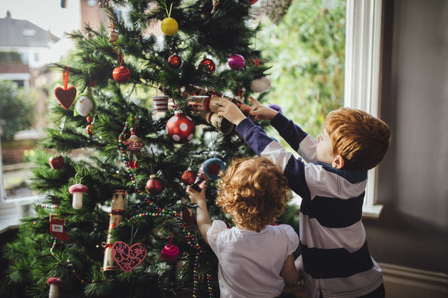 Which Is The Most Popular Type Of Christmas Tree Sold In